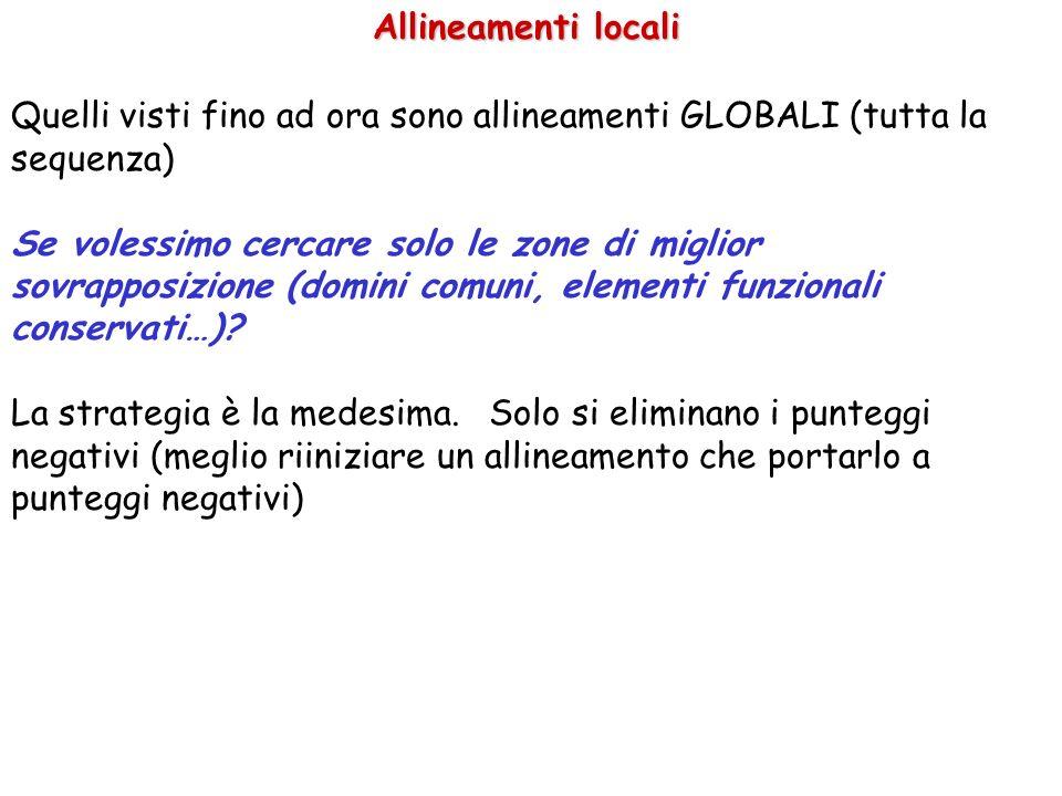 Allineamenti locali Quelli visti fino ad ora sono allineamenti GLOBALI (tutta la sequenza)