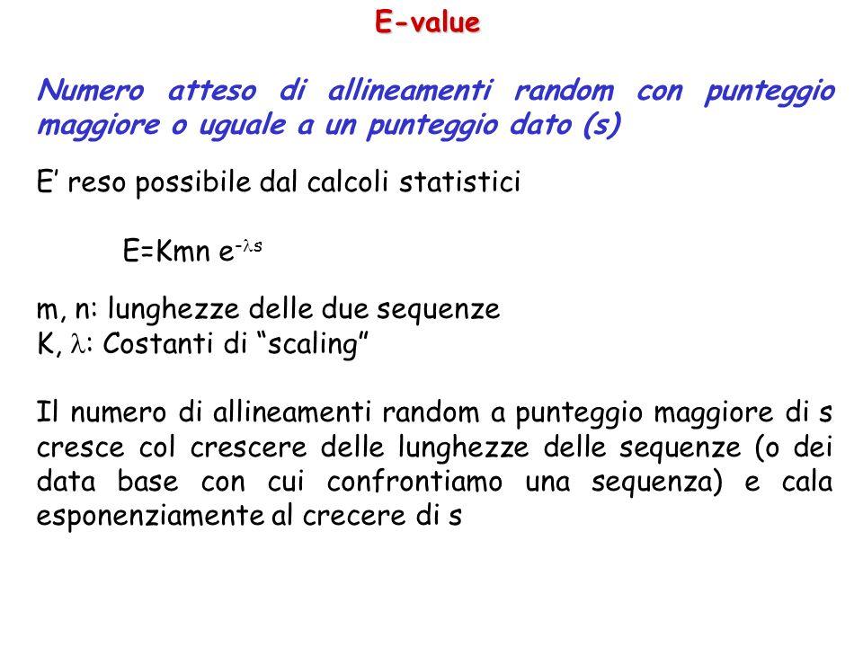 E-value Numero atteso di allineamenti random con punteggio maggiore o uguale a un punteggio dato (s)