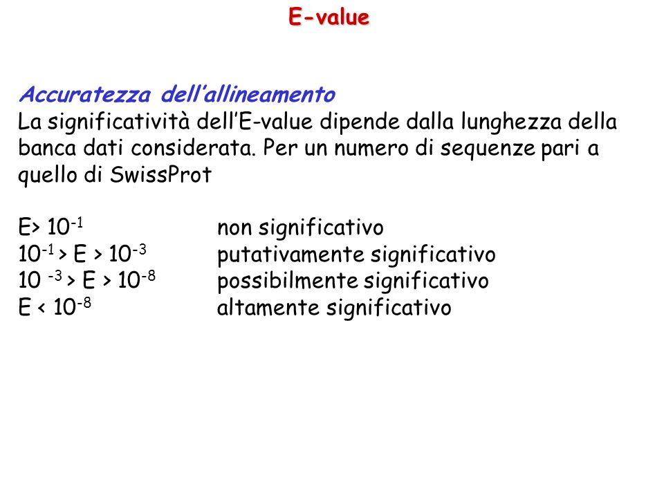 E-value Accuratezza dell'allineamento.