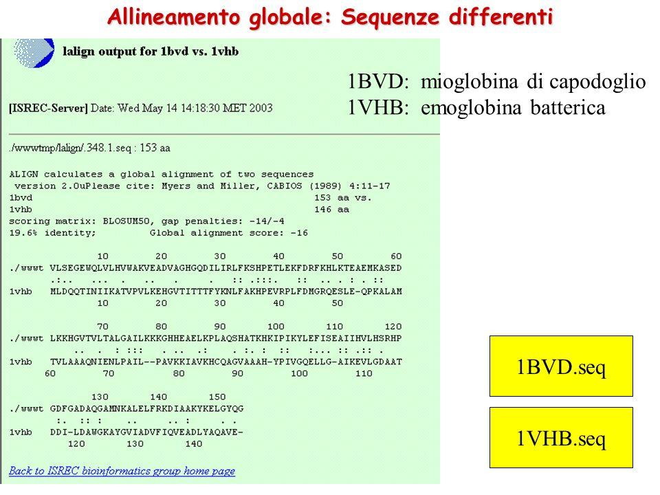 Allineamento globale: Sequenze differenti