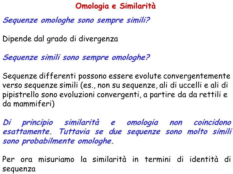 Omologia e Similarità Sequenze omologhe sono sempre simili Dipende dal grado di divergenza. Sequenze simili sono sempre omologhe