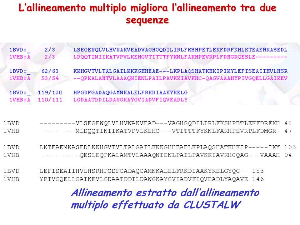 L'allineamento multiplo migliora l'allineamento tra due sequenze