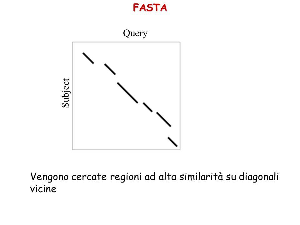 FASTA Query Subject Vengono cercate regioni ad alta similarità su diagonali vicine