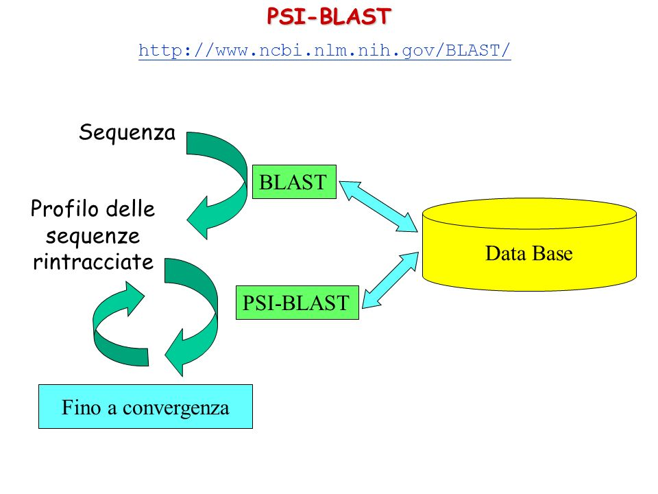 Profilo delle sequenze rintracciate