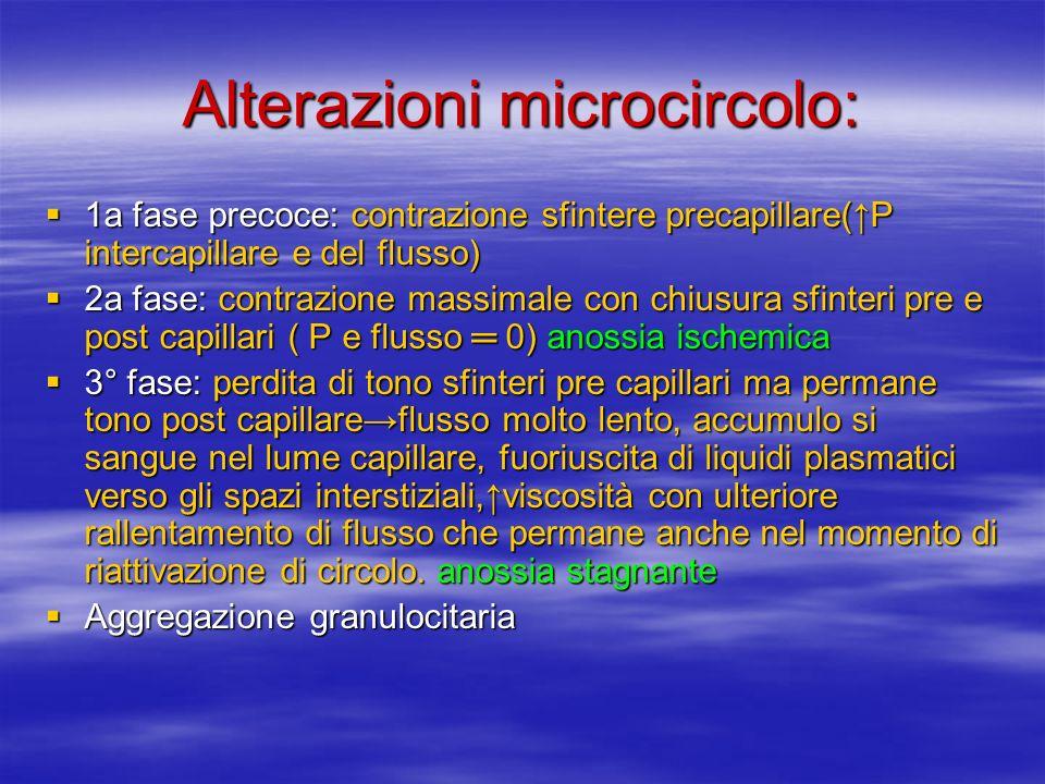 Alterazioni microcircolo: