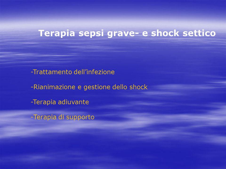 Terapia sepsi grave- e shock settico