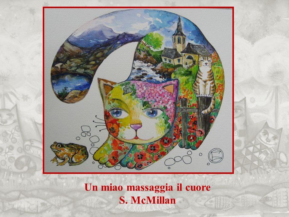 Un miao massaggia il cuore S. McMillan