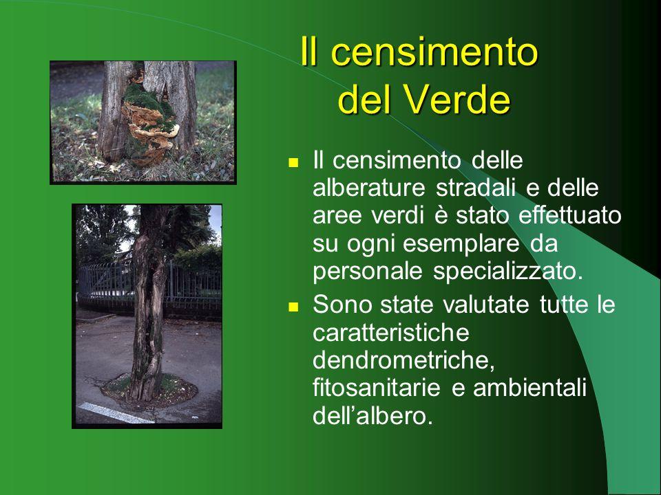 Il censimento del Verde