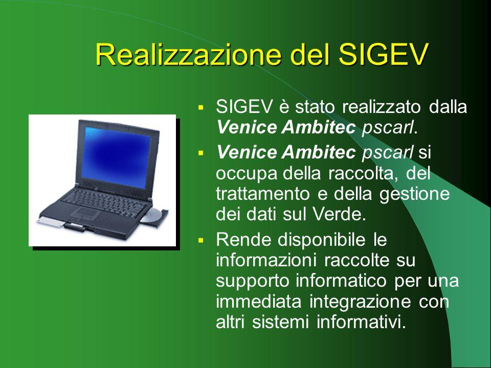 Realizzazione del SIGEV