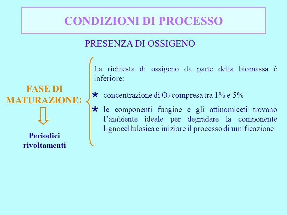 CONDIZIONI DI PROCESSO