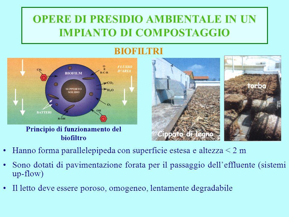 OPERE DI PRESIDIO AMBIENTALE IN UN IMPIANTO DI COMPOSTAGGIO