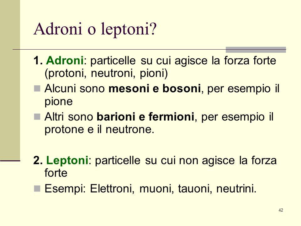 Adroni o leptoni 1. Adroni: particelle su cui agisce la forza forte (protoni, neutroni, pioni) Alcuni sono mesoni e bosoni, per esempio il pione.