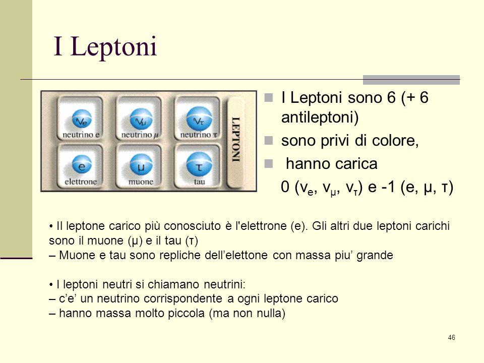 I Leptoni I Leptoni sono 6 (+ 6 antileptoni) sono privi di colore,