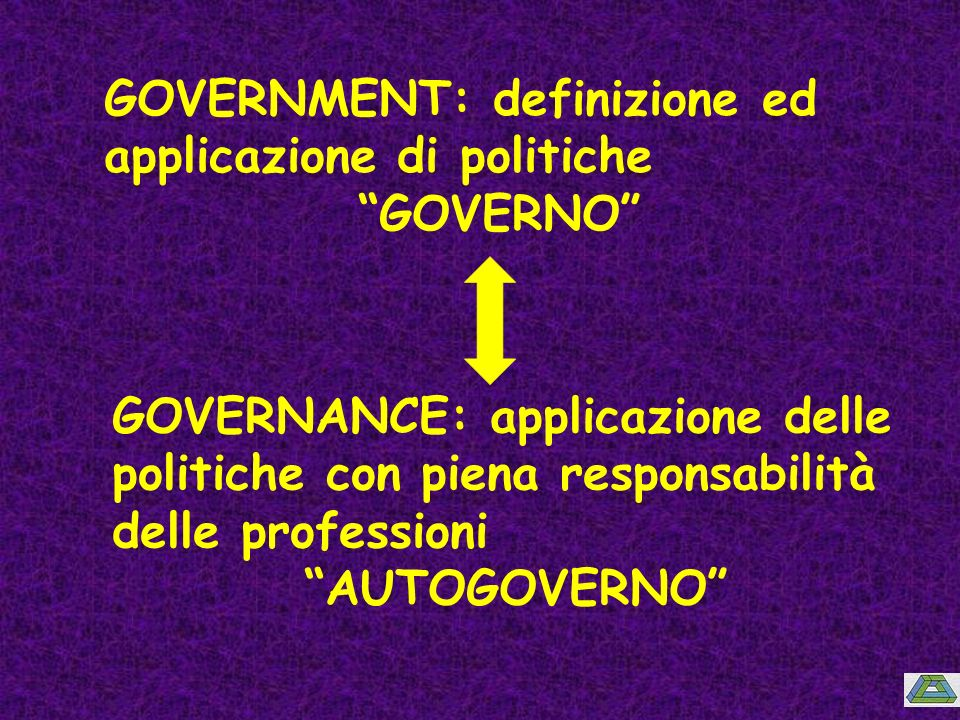 GOVERNMENT: definizione ed