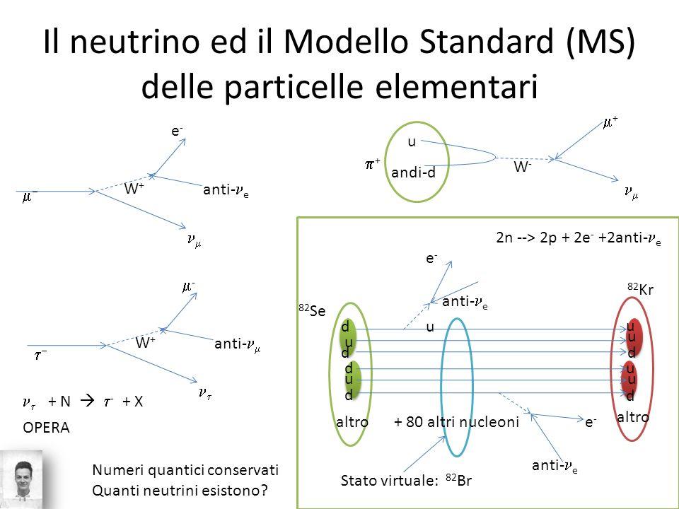 Il neutrino ed il Modello Standard (MS) delle particelle elementari