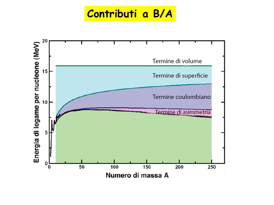 Contributi a B/A Nuclear properties can be summarized into static properties such as size etc….. Nuclear Radius measurements.