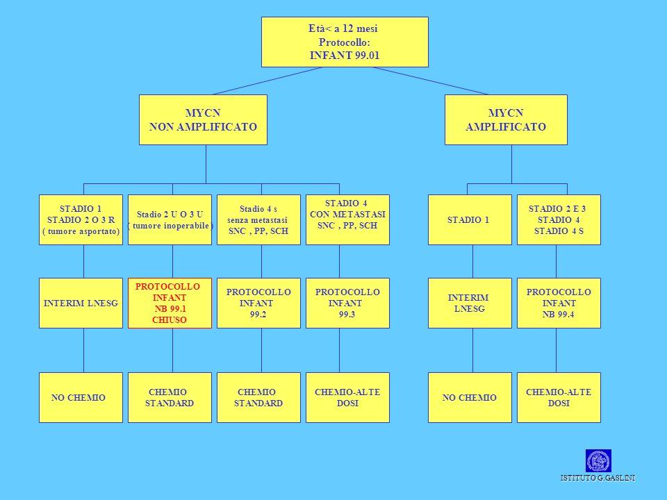 Età< a 12 mesi Protocollo: INFANT 99.01 MYCN NON AMPLIFICATO MYCN