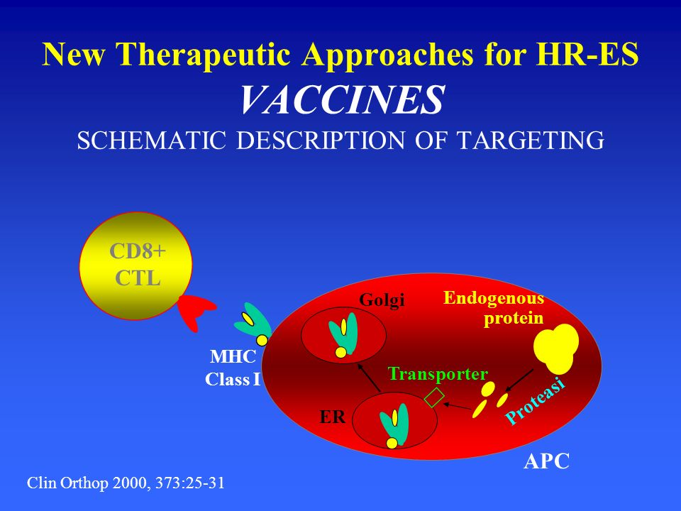 New Therapeutic Approaches for HR-ES VACCINES SCHEMATIC DESCRIPTION OF TARGETING