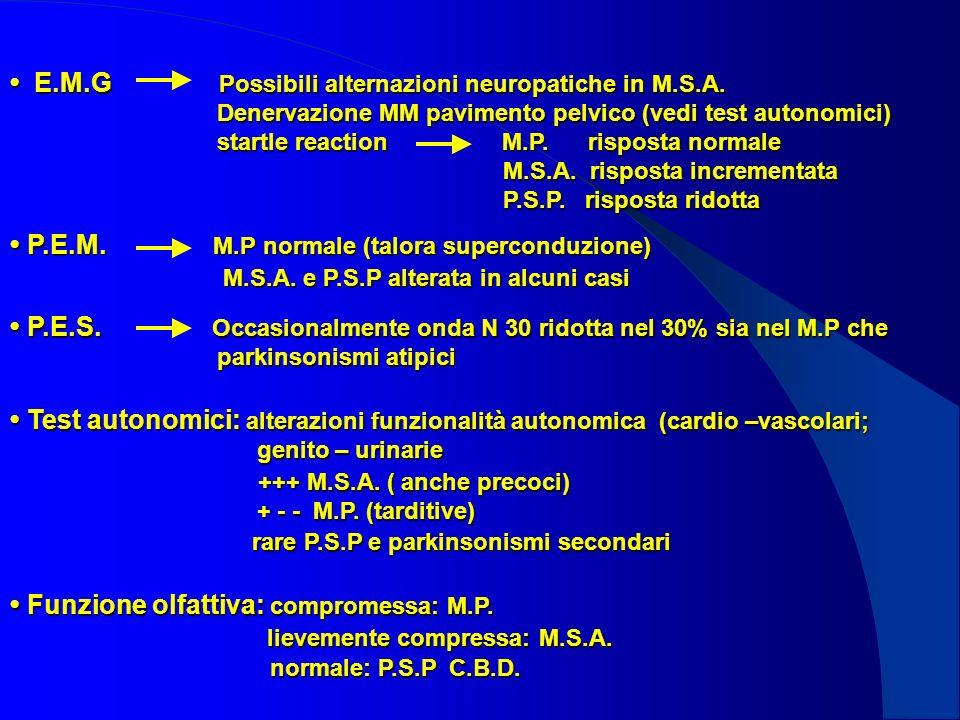 • P.E.M. M.P normale (talora superconduzione)