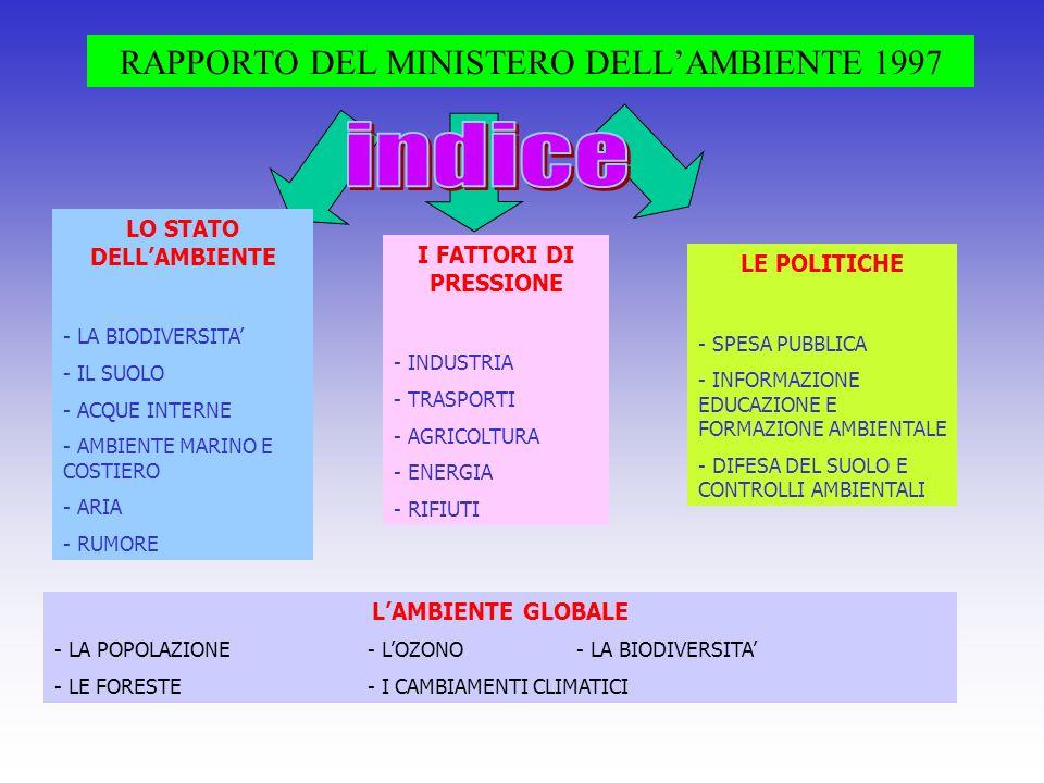RAPPORTO DEL MINISTERO DELL'AMBIENTE 1997