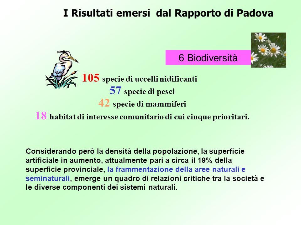 105 specie di uccelli nidificanti 57 specie di pesci