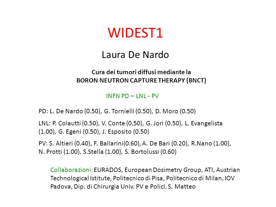 WIDEST1 Laura De Nardo Cura dei tumori diffusi mediante la