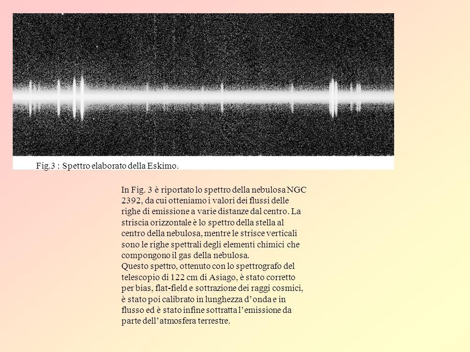 Fig.3 : Spettro elaborato della Eskimo.