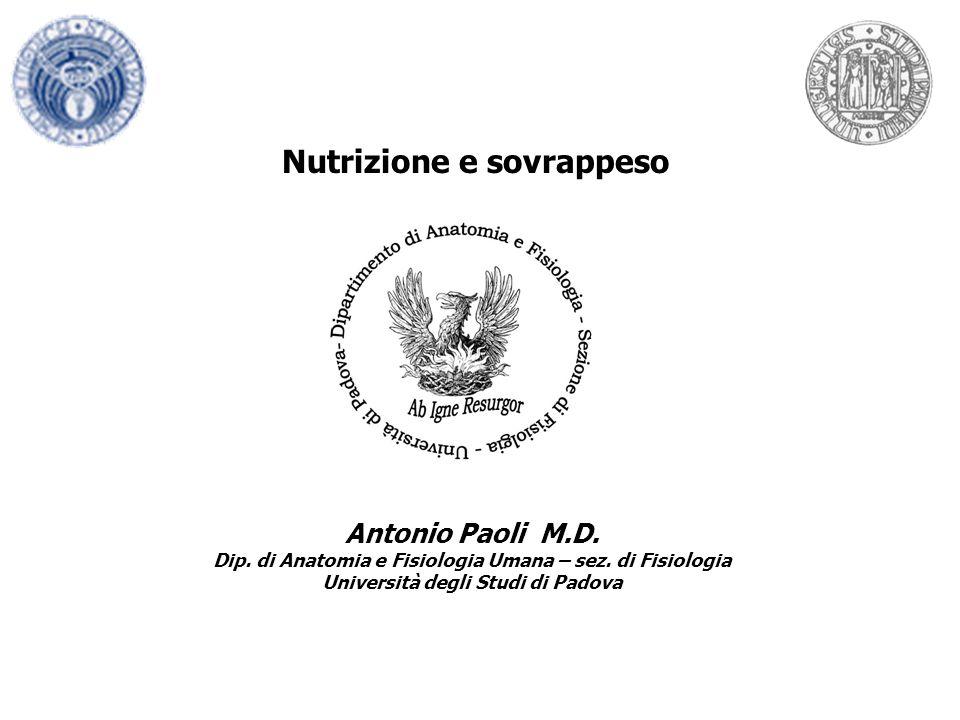 Nutrizione e sovrappeso