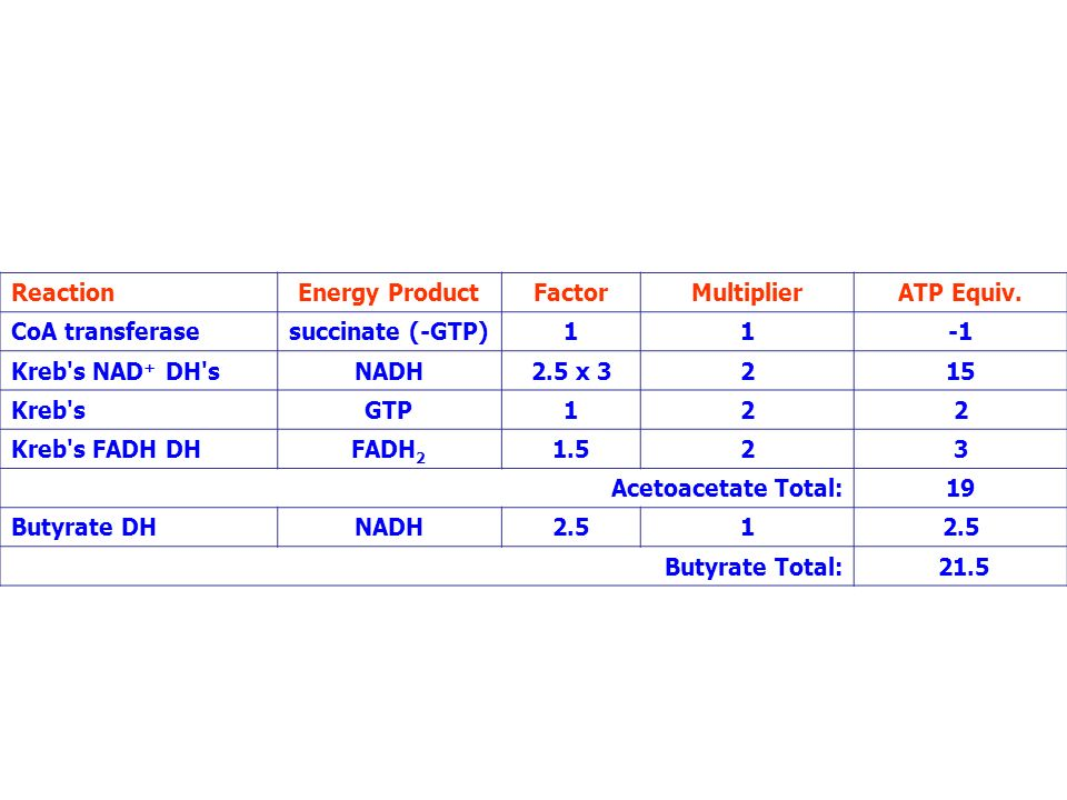 ReactionEnergy Product. Factor. Multiplier. ATP Equiv. CoA transferase. succinate (-GTP) 1. -1. Kreb s NAD+ DH s.