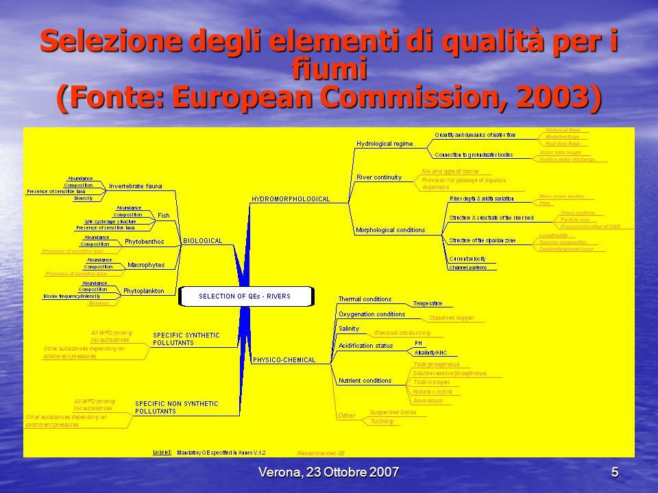 Selezione degli elementi di qualità per i fiumi (Fonte: European Commission, 2003)