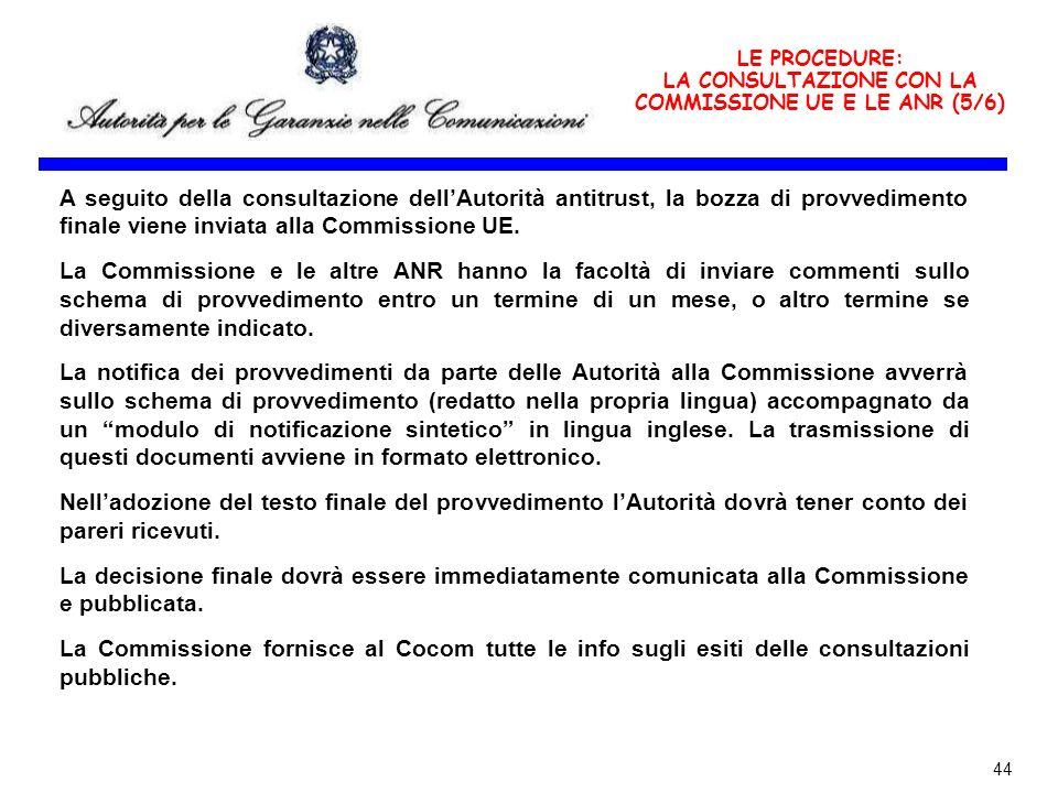 LA CONSULTAZIONE CON LA COMMISSIONE UE E LE ANR (5/6)
