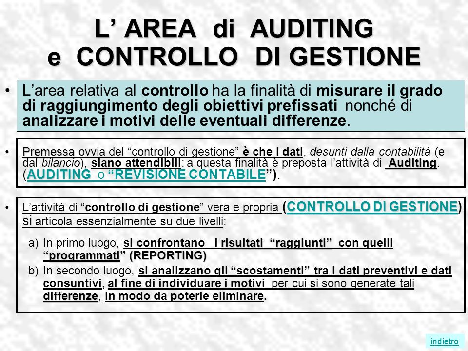 L' AREA di AUDITING e CONTROLLO DI GESTIONE