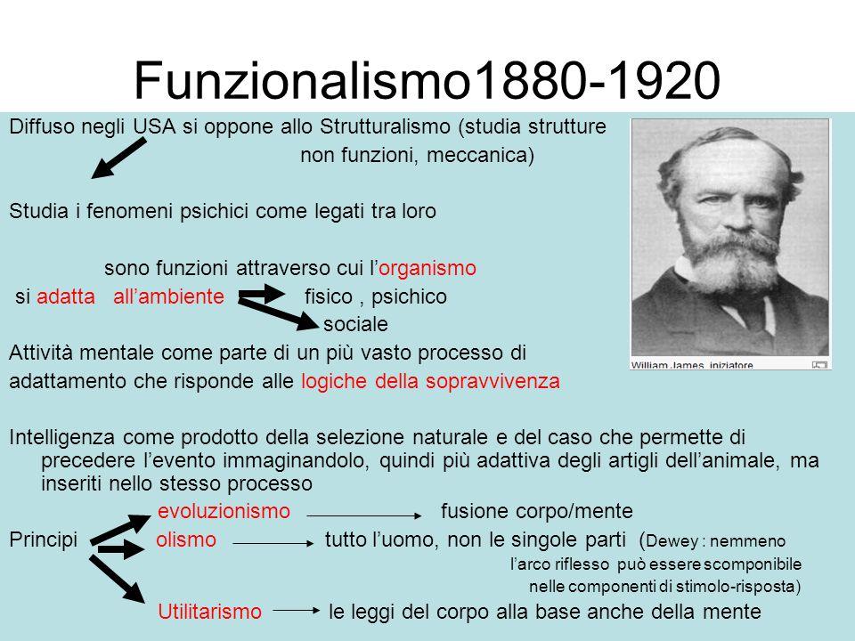 Funzionalismo1880-1920 Diffuso negli USA si oppone allo Strutturalismo (studia strutture. non funzioni, meccanica)
