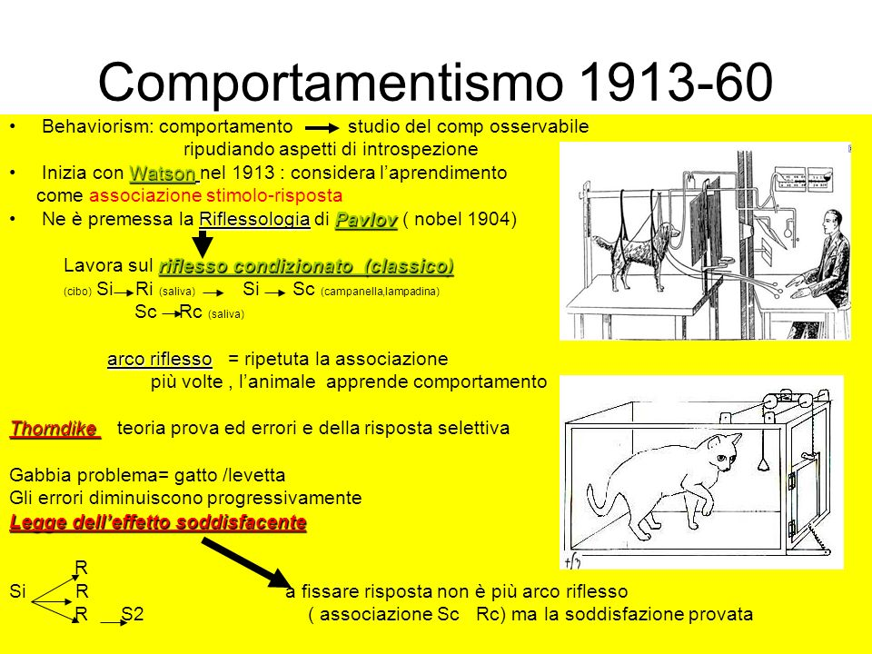 Comportamentismo 1913-60 Behaviorism: comportamento studio del comp osservabile. ripudiando aspetti di introspezione.