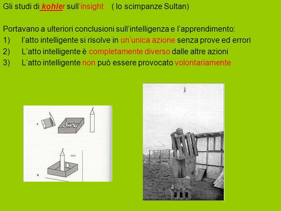 Gli studi di kohler sull'insight ( lo scimpanze Sultan)