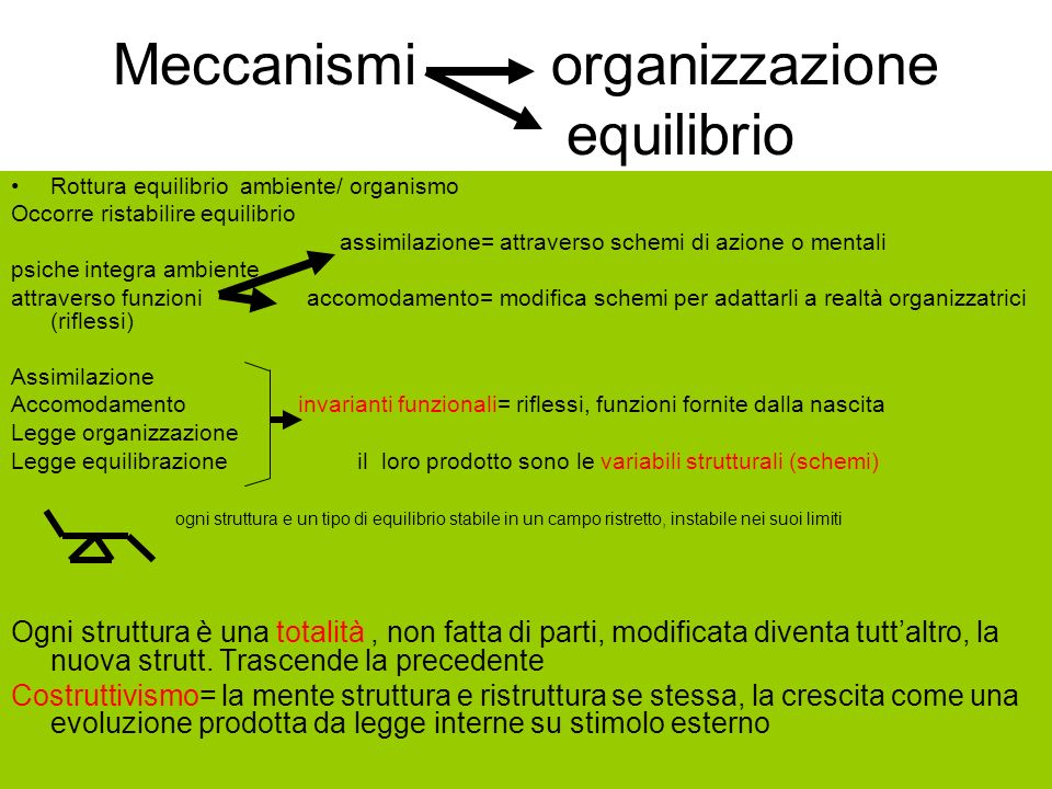 Meccanismi organizzazione equilibrio