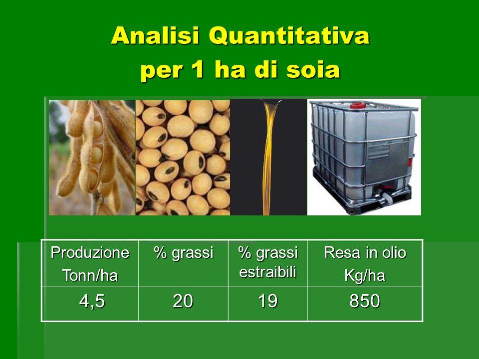 Analisi Quantitativa per 1 ha di soia