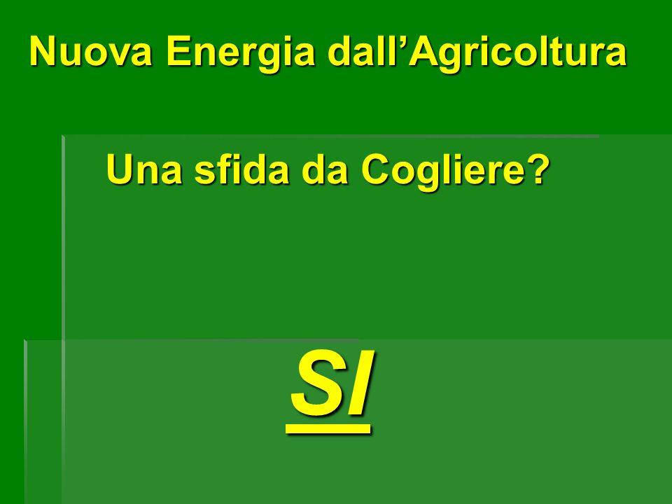 Nuova Energia dall'Agricoltura