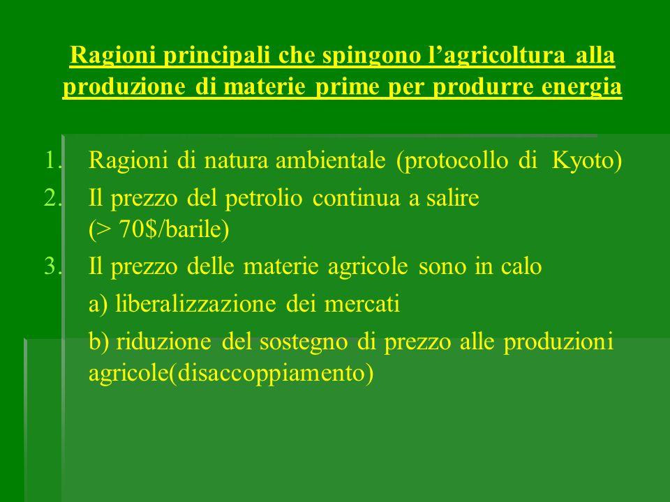 Ragioni principali che spingono l'agricoltura alla produzione di materie prime per produrre energia