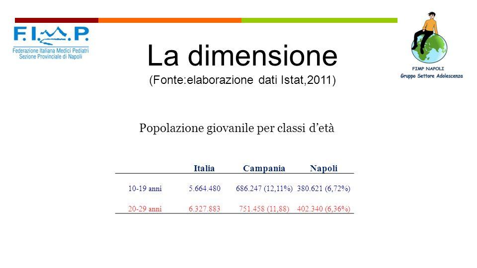 La dimensione (Fonte:elaborazione dati Istat,2011)