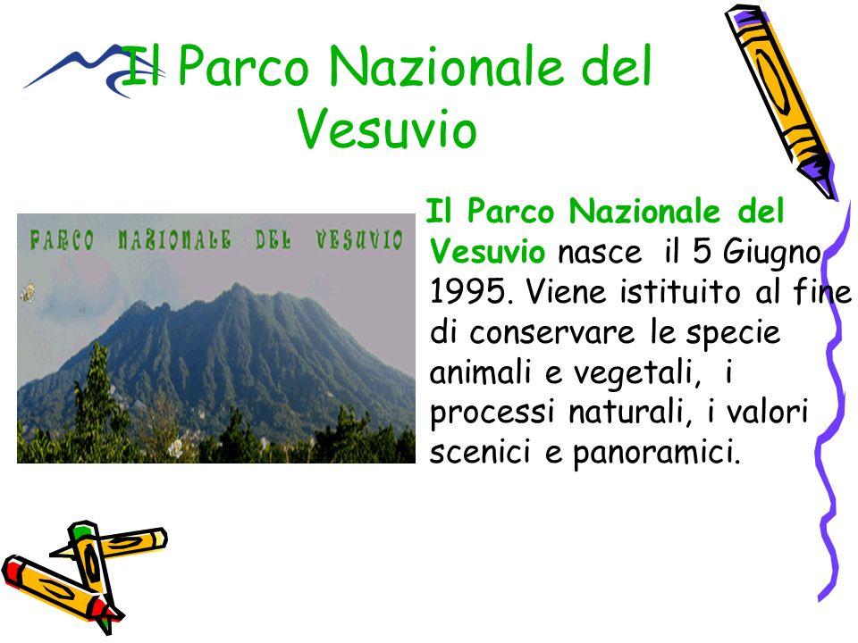 Il Parco Nazionale del Vesuvio