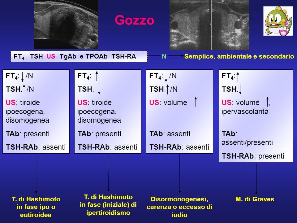 Gozzo FT4: /N TSH: /N US: tiroide ipoecogena, disomogenea