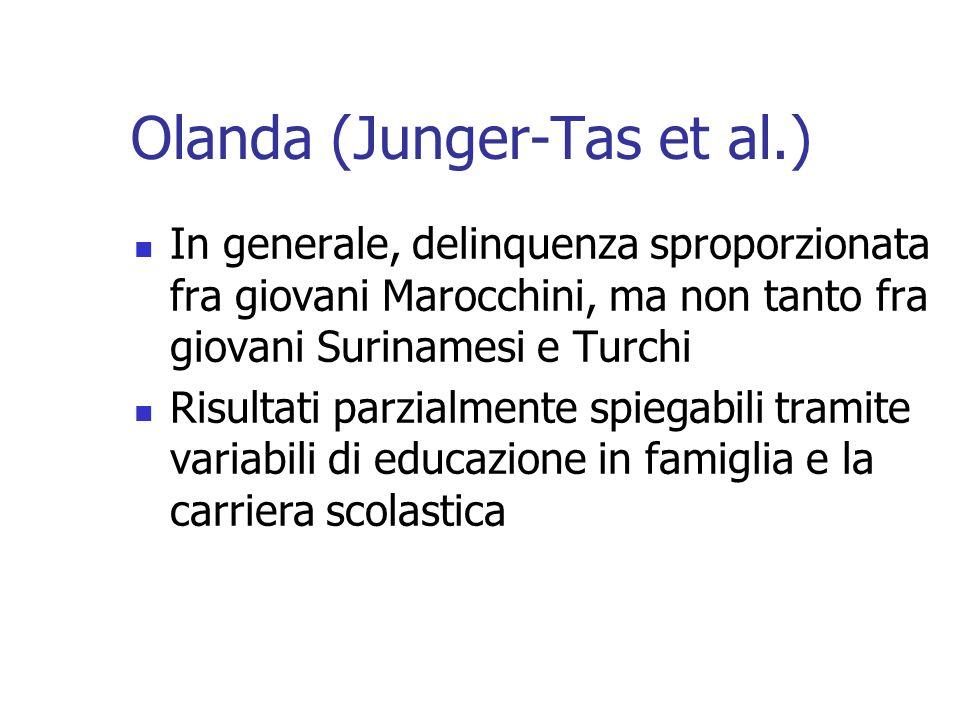 Olanda (Junger-Tas et al.)