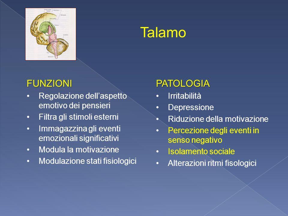 Talamo FUNZIONI PATOLOGIA