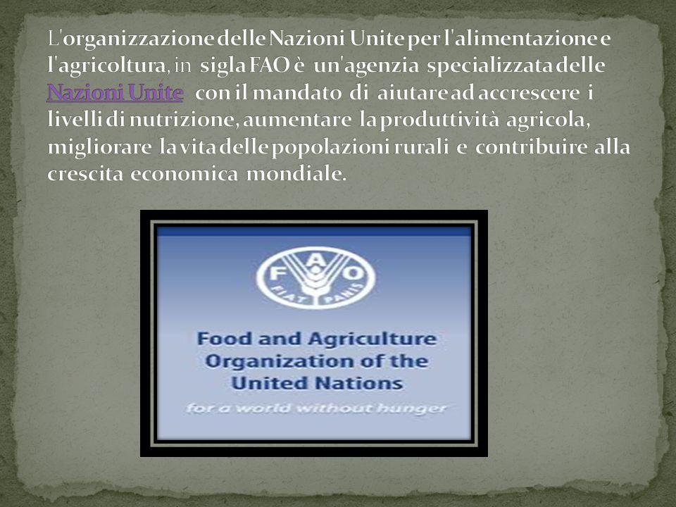 L organizzazione delle Nazioni Unite per l alimentazione e l agricoltura, in sigla FAO è un agenzia specializzata delle Nazioni Unite con il mandato di aiutare ad accrescere i livelli di nutrizione, aumentare la produttività agricola, migliorare la vita delle popolazioni rurali e contribuire alla crescita economica mondiale.
