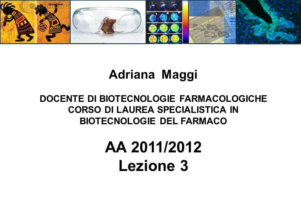AA 2011/2012 Lezione 3 Adriana Maggi