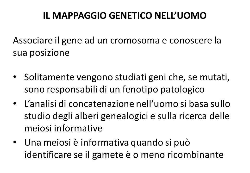 IL MAPPAGGIO GENETICO NELL'UOMO