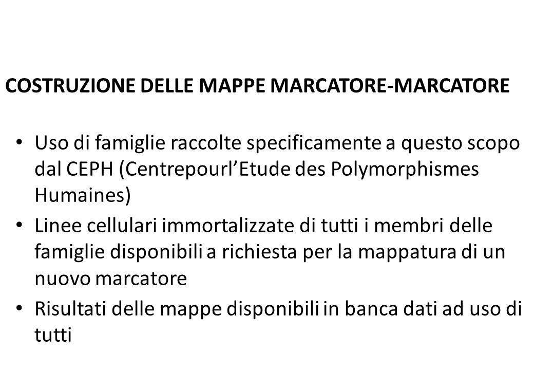 COSTRUZIONE DELLE MAPPE MARCATORE-MARCATORE
