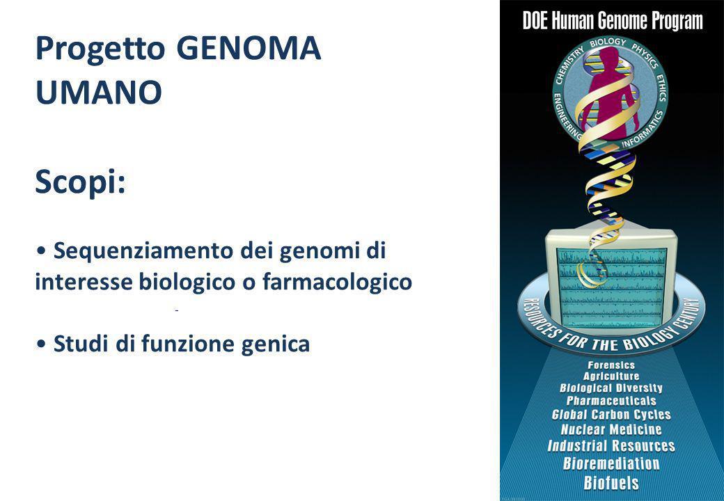 Progetto GENOMA UMANO Scopi: