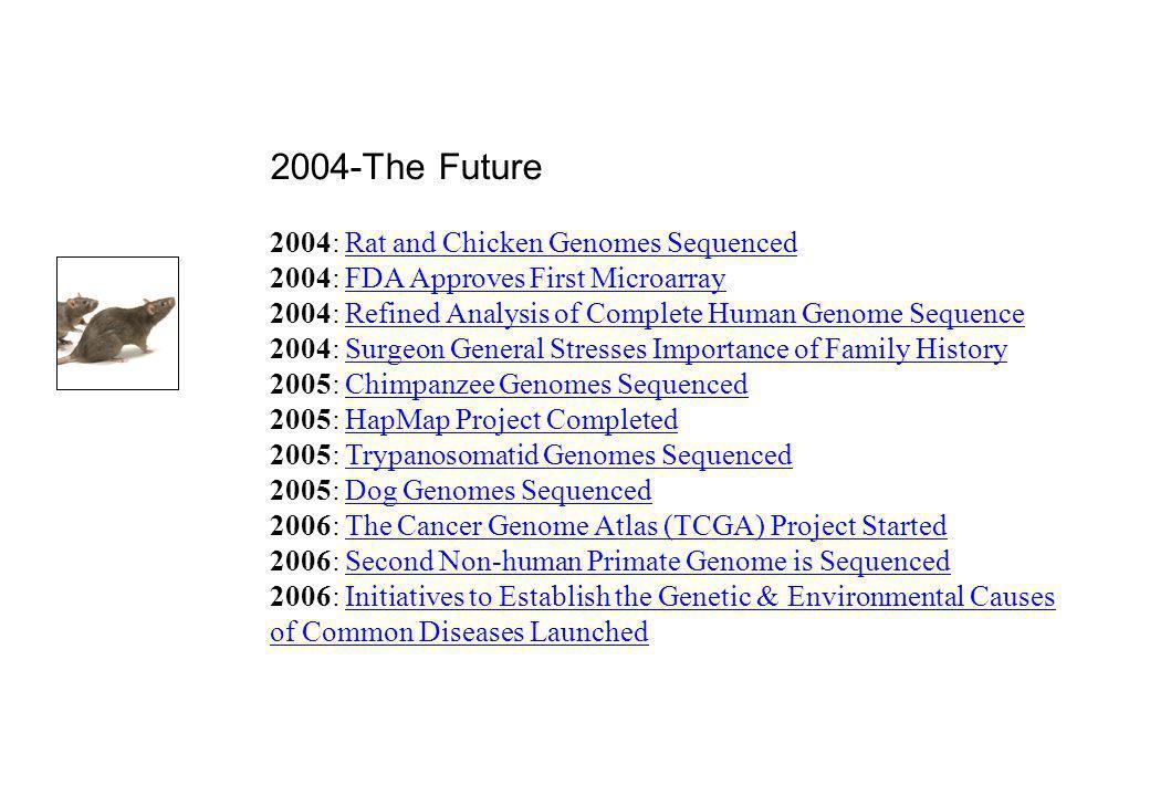 2004-The Future